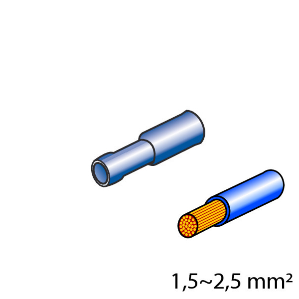 Lampa ΦΙΣΑΚΙΑ 5mm (10τμχ.)